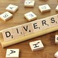 Diversity in IT - Inclusion = Diversity